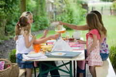 All'aperto picnic immagini stock libere da diritti