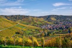 All'aperto stagione di caduta del paesaggio della vigna Autumn Orange Yellow Gre Fotografia Stock