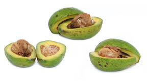 All avocados Royalty Free Stock Photo