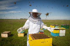All bees are mine. Horizontal photo of a beekeeper in white protection suit standing behind a beehive with arms wide open Stock Image