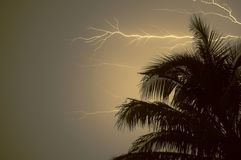 All Charged Up!. A very powerfull storm hits Fort Lauderdale late one Evening Royalty Free Stock Photos
