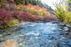 All the Colors on the River. Slow exposure of a river with autumn colors Royalty Free Stock Image