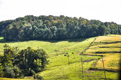 All That Is Country. This is wonderful fertile land royalty free stock photo