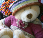 All Dressed Up. Macro of Teddy Bear in Knit Hat and Sweater royalty free stock photo