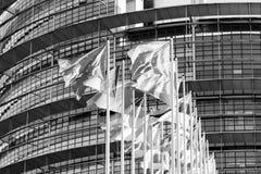 All Eu Flags Eurozone waving against European parliament buildin Royalty Free Stock Photo