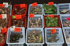 All For Fishing. Shop show-window `All for fishing. Plummet tackle Royalty Free Stock Photo