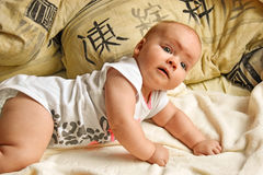 On all fours baby crawling photo. Beautiful picture, background, Stock Photo