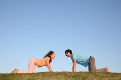 All fours couple. On grass Stock Image
