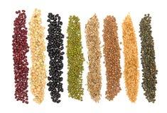 all grain Στοκ εικόνα με δικαίωμα ελεύθερης χρήσης