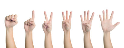 All hand sign posture number 0-5 isolated Stock Photography