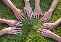 All hands together. On the grass  as a team Stock Photography