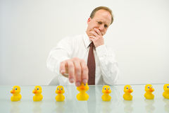 All his ducks in a row. A business man making sure all his ducks are in a row Royalty Free Stock Images