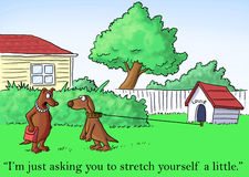 All I'm asking you to do is stretch yourself.