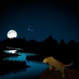 All'indicatore luminoso di luna Immagini Stock Libere da Diritti