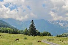 All'inizio di alta strada alpina di Grossglockner, Ferleiten, Austria Fotografia Stock Libera da Diritti