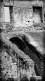 All'interno del colosseum, Roma Fotografie Stock