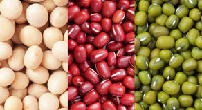 All kind of beans Royalty Free Stock Photos