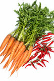 All kinds of vegetables Stock Images