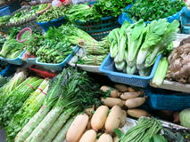 All Kinds of Vegetables at Market. All kinds of vegetables such as lettuce, broccoli, green beans, and more on display at a market Stock Photography