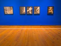 all konst filtrerade för fotobilder för gallerit bara den hela väggen Royaltyfria Bilder