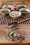 all liggande tea för jordningssorter Arkivbilder