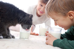 They all like milk. Cat and kids drinking milk stock image