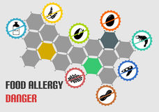 All the most common food allergy type icons Royalty Free Stock Photos