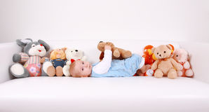All My Best Friends Royalty Free Stock Images