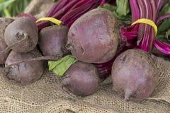 All Natural Beats. All natural organic farmers market beats on hemp cloth stock photography
