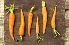 All-natural carrots lined up on wooden board Royalty Free Stock Images
