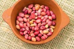 All-natural red beans in ceramic terracota bowl Stock Image