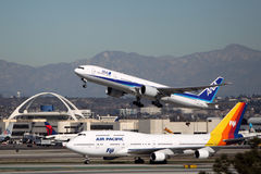 All Nippon Airways (ANA) Boeing 777-381ER Royaltyfri Foto