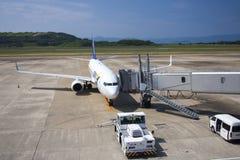 All Nippon Airways (ANA) flygplan Royaltyfria Foton