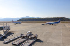 All Nippon Airways-ANAvliegtuig Stock Foto