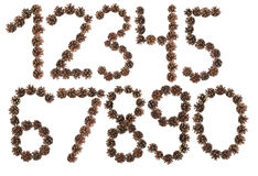 All number made of pine cone Royalty Free Stock Image