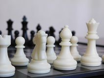 All white and black pieces of chess Stock Photos