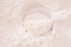 All purpose flour presented. In  cup measure Stock Photography
