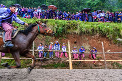 All Saints' Day horse race, Todos Santos Cuchumatan, Guatemala Stock Image