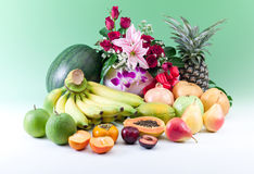 All Seasoning Fruits Isolated On Green Background Stock Image