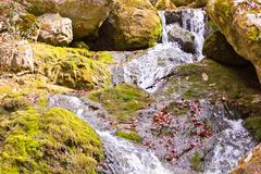 All seasons waterfall stock images