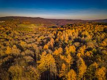 Drone Nature Germany Sunset Colors stock image