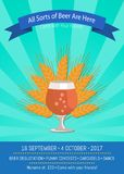 All Sorts of Beer Are Here Vector Illustration. All sorts of beer are here, come with your friends Vector illustration  on azure background demonstrating tulip Royalty Free Stock Photo