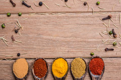 All spice powder. On the wood spoon royalty free stock images