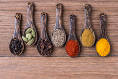 All spice powders and seed herbs. On the wooden table royalty free stock image