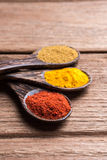 All spice powders on the spoon royalty free stock photography