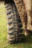 All terrain tire Stock Photos