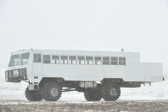 The all-terrain vehicle for snow trips to a snow blizzard in the tundra. Special car for the Arctic safari. Canada. Churchill National Park stock photos