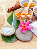 All of thai skin care ingredients. Stock Photo
