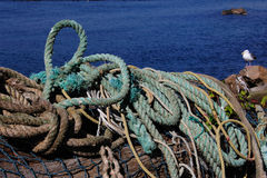 All Tied Up!  Fishing Ropes on Jetty in Oregon Stock Photography