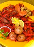 A Hot and Spicy Kick in the Pants Crawfish Style! royalty free stock photography